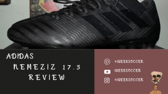 Nemeziz 17.3 Review